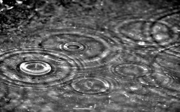 Raindrop Photo