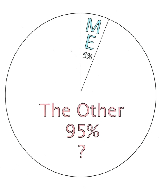 The Other 95%